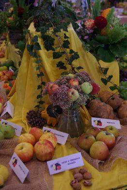 Exposition Fruitière @ Salle des Corporations HAGUENAU